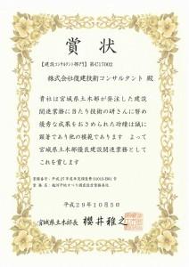 H29_miyagidoboku03